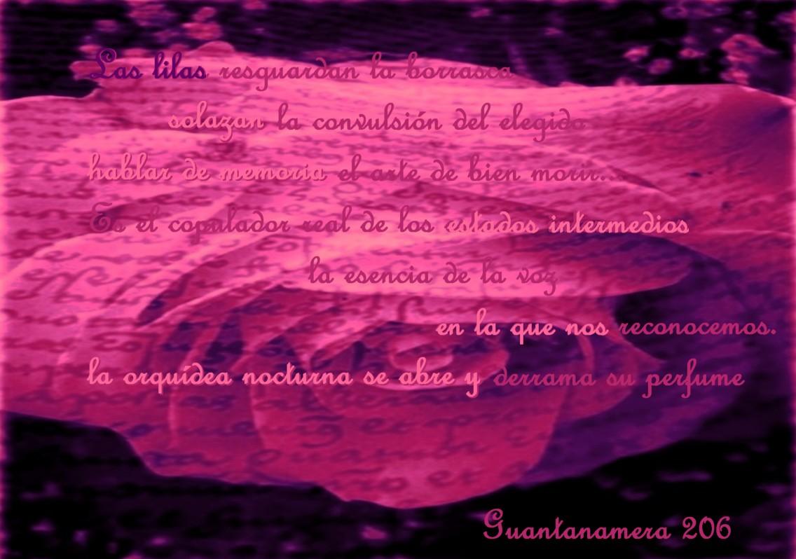 en otras palabras - Diccionario Ingls-Espaol